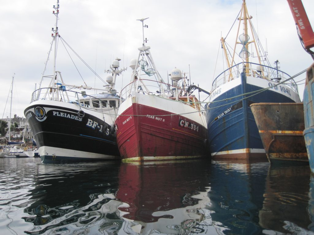 The Pleiades, Fear Not 2 and Ocean Trust in the harbour.