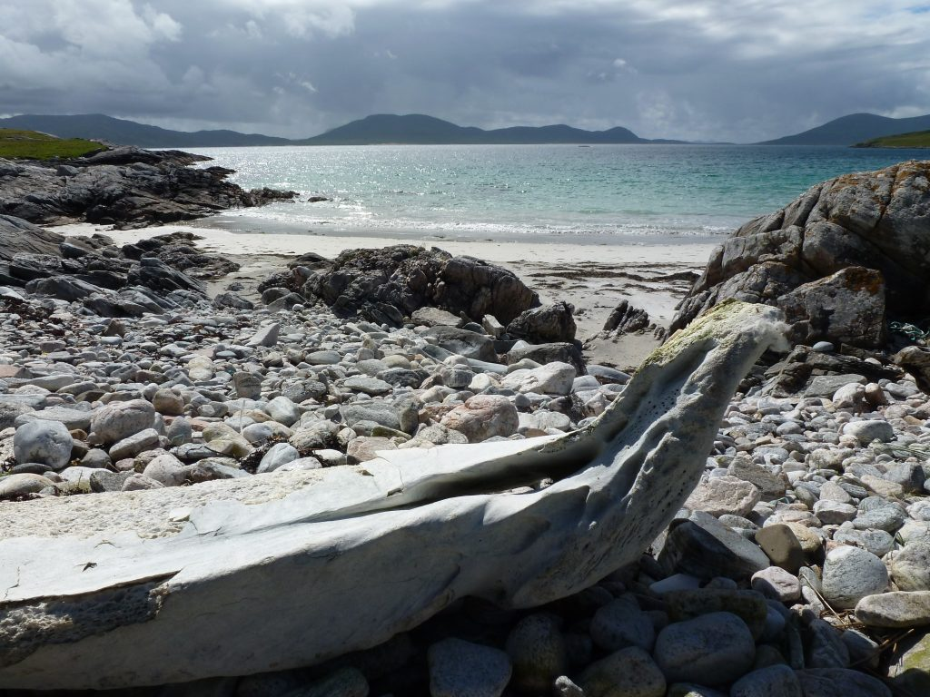 Whalebone with a view over Harris